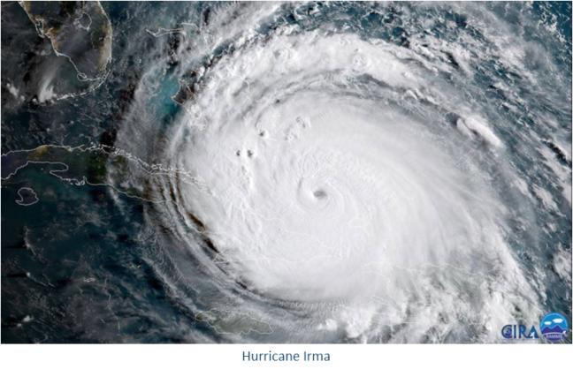Irma Resize